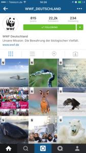 Insta_WWF