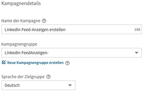 LinkedIn Kampagnendetails
