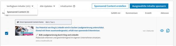 LinkedIn Anzeige in Content Hub